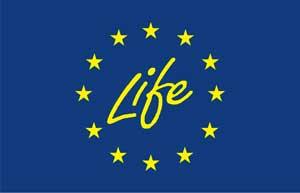 Life-Logo-webjpg